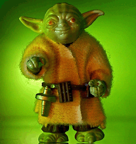 Yoda Wisdom Report