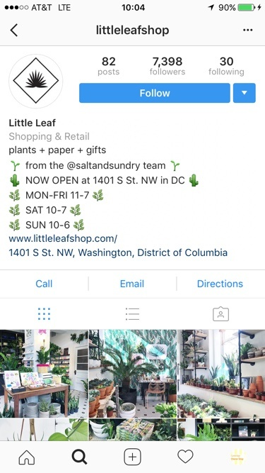little leaf business account example