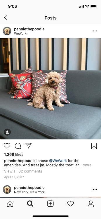 instagram marketing user generated content wework