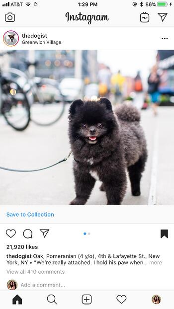 Instagram的营销-41