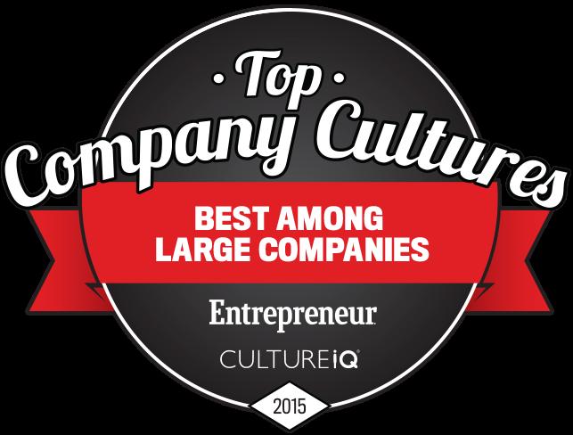 top_company_cultures.png
