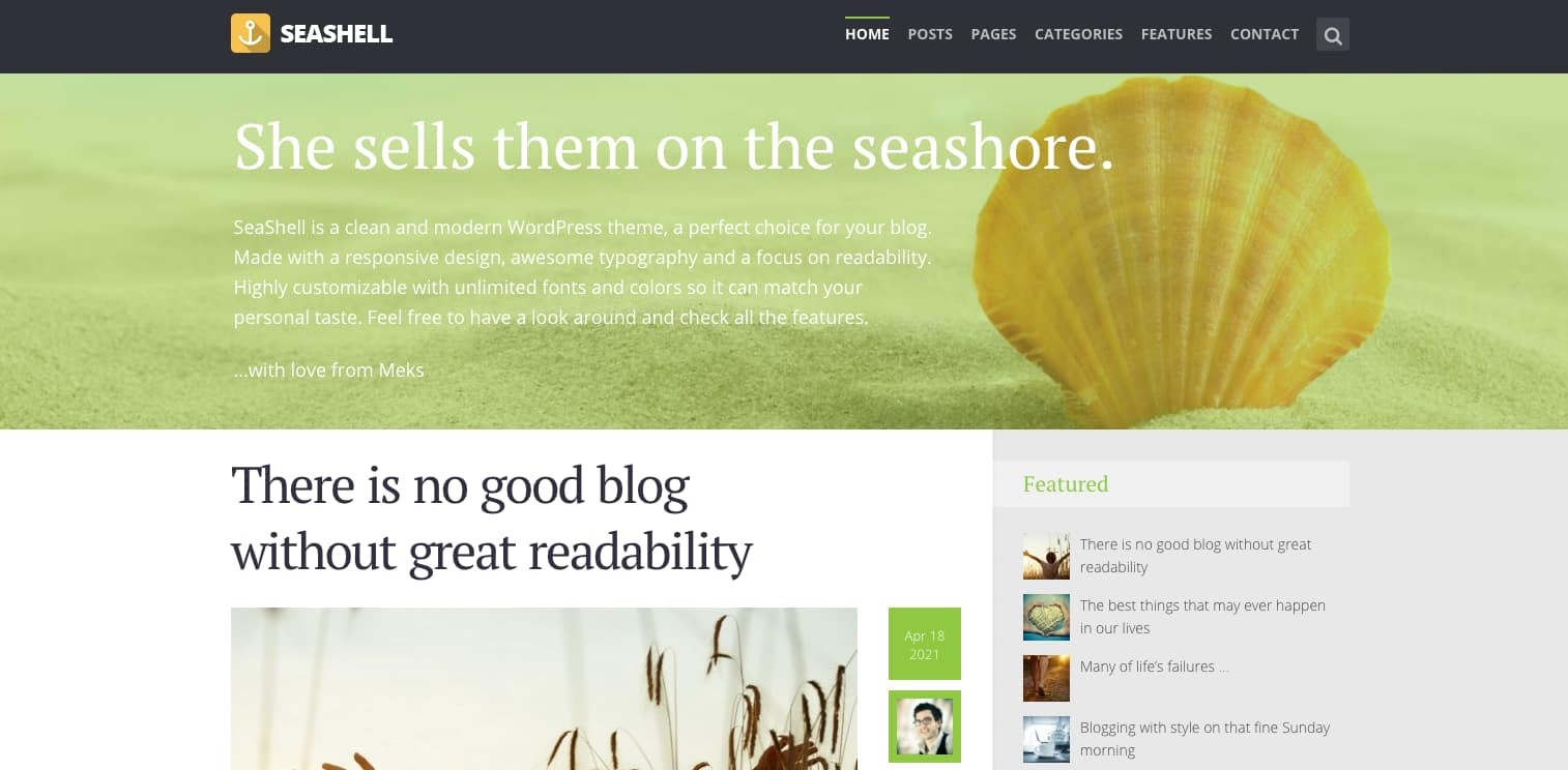 demo of the wordpress theme for adsense seashell