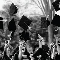 TNF_Job-after-graduation-1.png