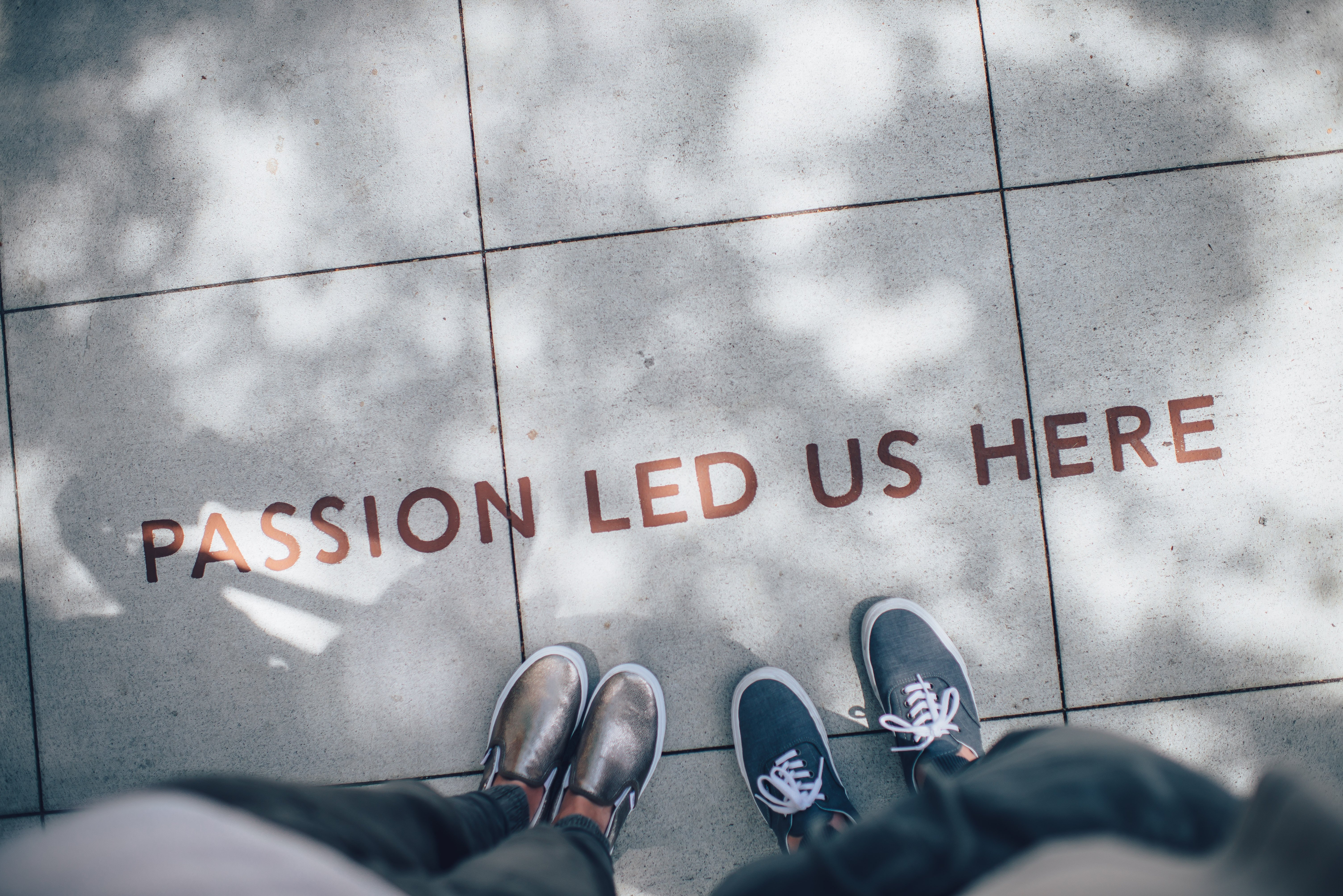 Lesson in Love: How to Find Your Professional Passion