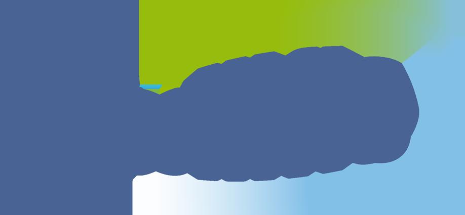 Intelliflo Team