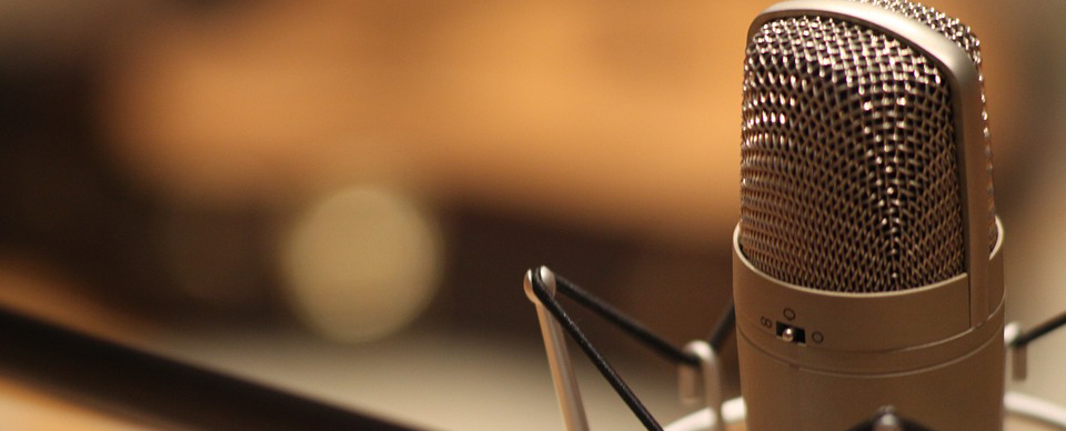 microphone-1003561_960_720_cropped3.png