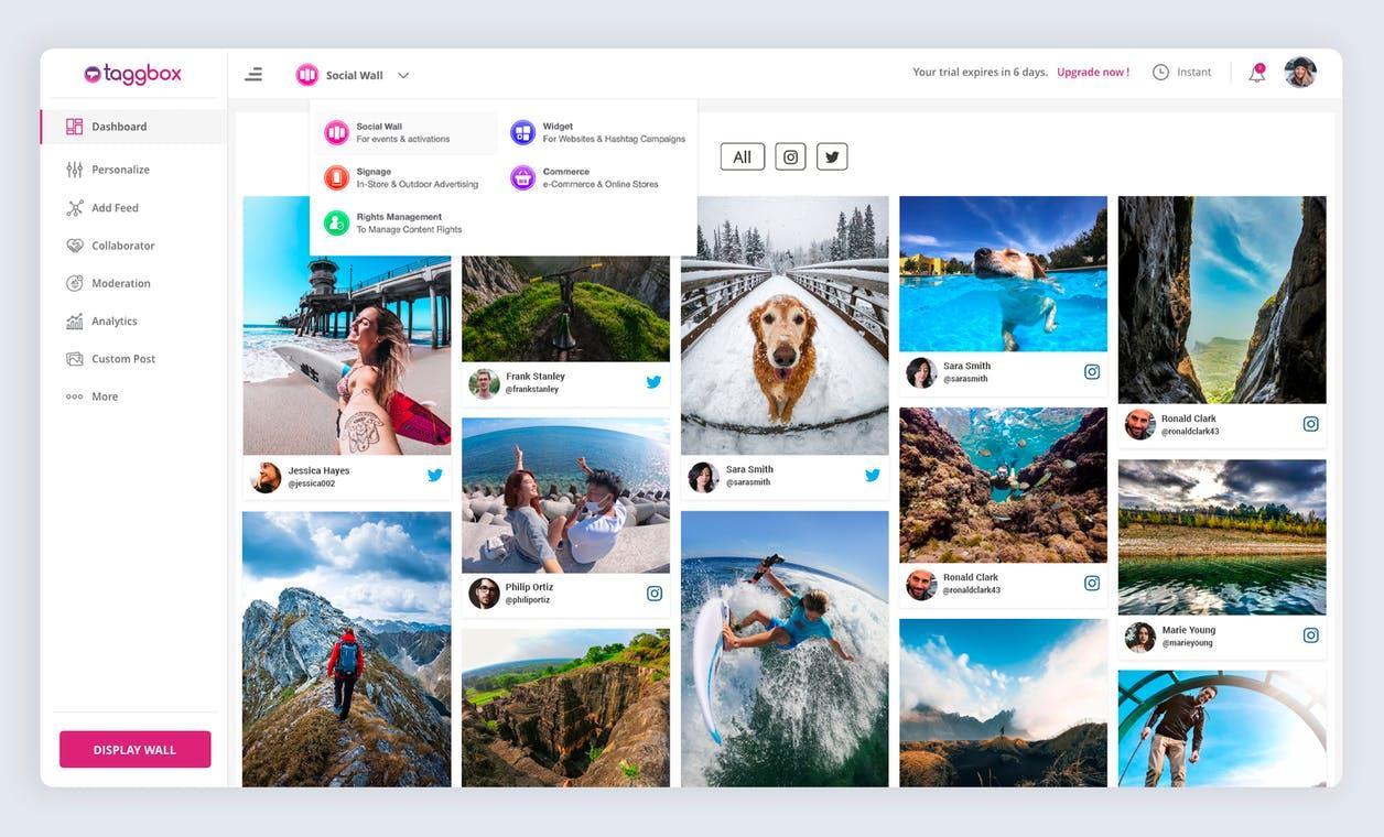 taggbox social media content aggregator tool